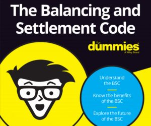Dummies Guide to the BSC front cover